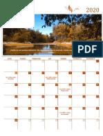 Calendar literar - noiembrie 2020