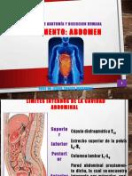 abdomen-150320135713-conversion-gate01.pdf