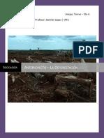 Anteproyecto - Deforestacion