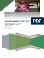 Cultivo-Invitro-Semillas-Orquideas (1)