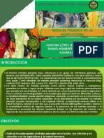 METALES PESADOS EN LA AGRICULTURA.pdf
