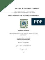 Jose Carlos Sanchez Irigoin FIAI.pdf