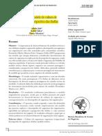 Job_Silva_Moreira_2020_Teste-de-um-Modelo-de-Cultura-_57454.pdf
