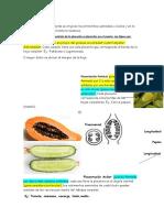 Placentación.docx