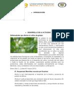 Fase 4 _ Gulupa Interacción planta-patógeno.docx