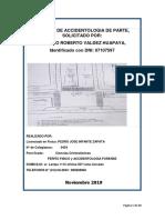 INFORME PERICIAL ACCIDENTE DE MOOCICLETA HONDA