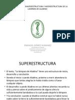 SUPERESTRUCTURA, MACROESTRUCTURA Y MICROESTRUCTURA DE LA LAMPARA