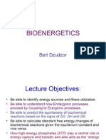 BIOENERGETICS (2)