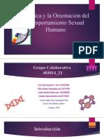 Grupo_23-Presentación Bioética y la Orientación del Comportamiento Sexual Humano