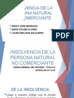 INSOLVENCIA DE LA PERSONA NATURAL NO COMERCIANTE