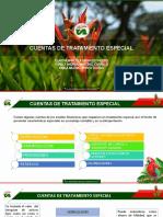 cuentas tratamiento especial-1.pptx