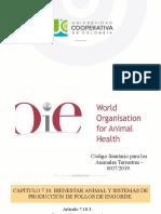 bienestar aves de engorde OIE.pptx