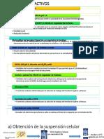 dlscrib.com-pdf-digrama-flujo-practica-3-dl_17d7fe8fb3294c7fb2386de01930bd07