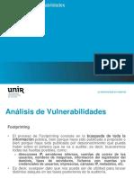AV-2-Footprinting.pdf