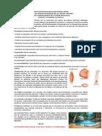 TALLER DE CIENCIAS NATURALES #8 GENERALIDADES DEL SISTEMA MUSCULAR.pdf