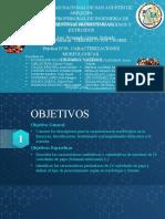 PRÁCTICA N°01. CARACTERIZACIONES MORFOLÓGICAS DE PAPAS NATIVAS.pptx