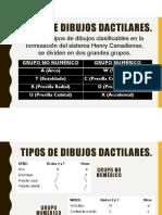 02 SISTEMAS DE IDENTIFICACIÓN DE UNA HUELLA (Dactilogramas).pdf