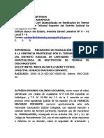 RECURSO DE MODULACION DE HORACIO MACHADO.docx