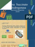 Enzima  Succinato Deshidrogenasa.pptx