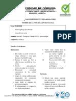 Actividad labaratorio Tejidos Vegetales.doc
