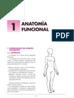 739.0 + anatomia funcional