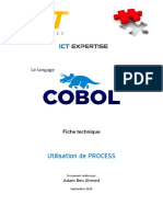 COBOL-PROCESS.pdf