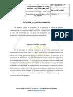 CULTIVO DE PLATANO ASOCAMALPRO