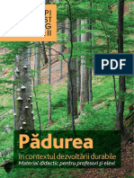 the_forest_in_the_context_of_sustainable_development_educational_material_for_teachers_a_1
