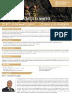 ESTRUCTURA DE COSTOS EN MINERÍA - MAR19.pdf