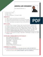 COMPLETO LUIS EDUARDO PALOMINO-HOJA DE VIDA 2020.docx
