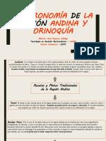 Recetas y Platos Tradicionales de la Región.pptx