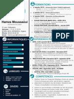 CV  MOUSSAOUI  (1)