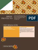 Brief proyecto.pptx
