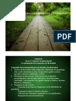 Necesidades de Apoyo Educativo_caracteristicas