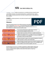 placas segundo corte pato.pdf