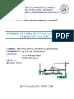 INFORME PLANTA DE TRATAMIENTO.pdf