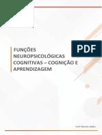 Funções Neuropsicológicas Cognitivas - Cognição e Aprendizagem.pdf