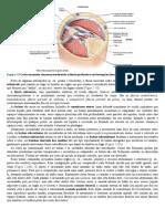 01 (32).pdf