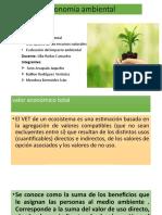 Economía ambiental.pptx