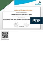 Lucha_contra_incendios_y_evacuación-Ver_Certificado_151526