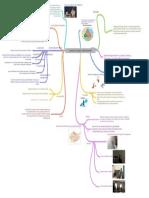 analyse_de_pratique_professionnelle__ (1).pdf