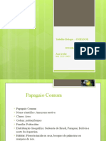 Etograma - apresentação pptx