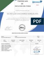 certificado constelação.pdf