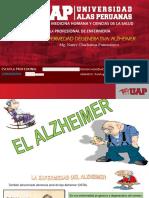ENFERMEDAD DEGENERATIVA ALZHEIMER