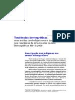 censo indigenas ibge.pdf