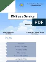 DNSasaService