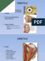 PATOLOGIA ANEXELOR GLOBULUI OCULAR