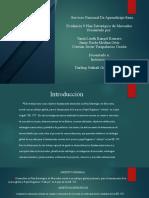 actividad 9 informe plan estrategico del mercado