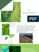 La desforestacion.pptx