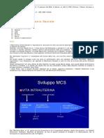 Movimento_Cranio_Sacrale.pdf